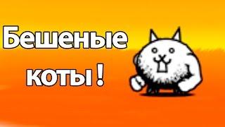 Бешеные коты ! ( Battle Cats )