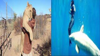 Top 7 Increíbles Animales Que Salvaron Vidas Humanas | X Qriosity