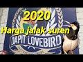 Harga Jalak Suren  Dapit Lovebird  Mp3 - Mp4 Download