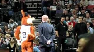 Spurs Coyote Chicken Seduction