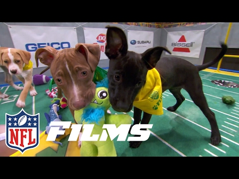 Behind the Scenes of the Puppy Bowl | NFL Films Presents