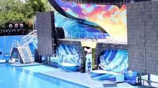seaworld orlando florida with shamu show june 2014