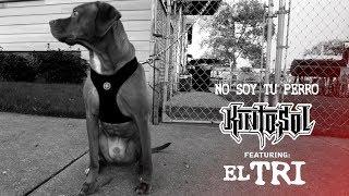Kinto Sol - No Soy Tu Perro Feat. EL TRI [Audio]