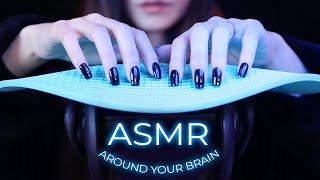 ASMR Gentle Triggers Around Your Brain (No Talking)