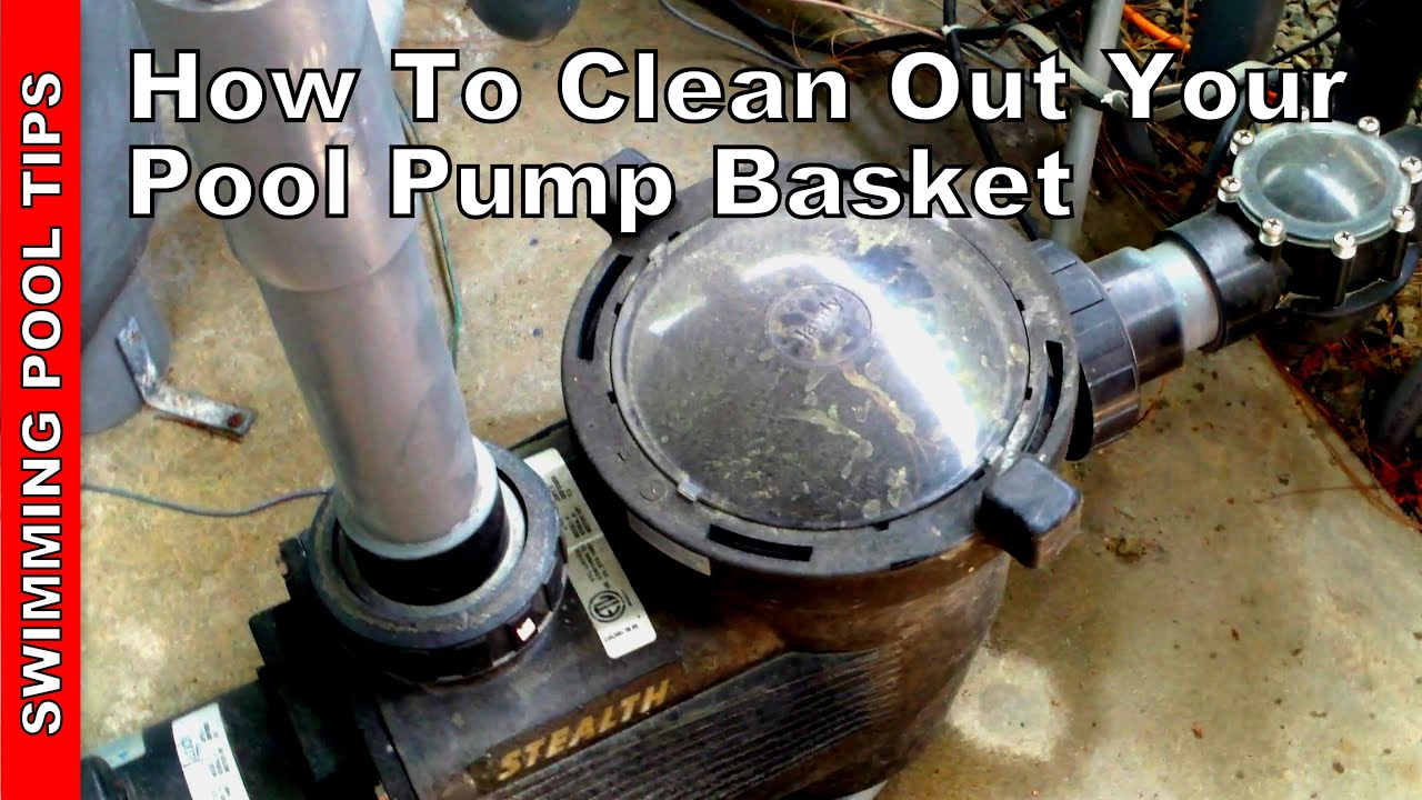 How To Clean Out Your Pool Pump Basket Youtube