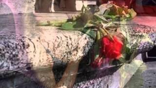 Video Una spina e una rosa download MP3, 3GP, MP4, WEBM, AVI, FLV November 2017