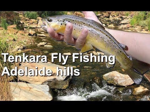 Tenkara Fly Fishing Adelaide Hills GOPRO