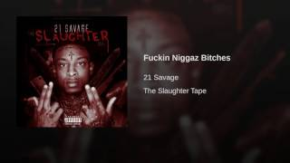 [3.12 MB] 21 Savage Fuckin Niggaz Bitches