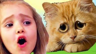 КРАСНЫЙ ШАР МИСС КЕЙТИ спасает кошку Мурку, новое приключение, Детский летсплей #6