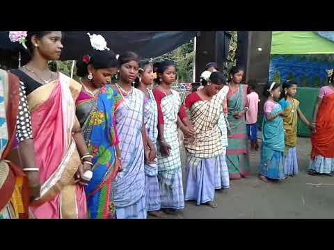 Santhali.dang.video.9654570794