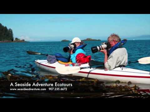 A Seaside Adventure Ecotours