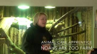 Haddon Training Talks To Our Animal Care Apprentice At Noahs Ark Zoo Farm