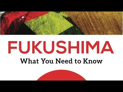 Five point plan for Fukushima