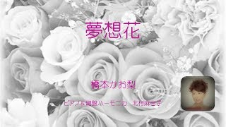 Official Site 橋本かお梨 http://www.khashimoto1023.wixsite.com/opera.