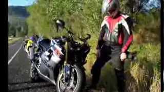 Motorcycle vs animals crashes