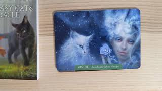 Fantasy Cats Oracle! Unboxing and first look