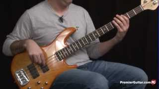 Review Demo - G&L Instruments M2000