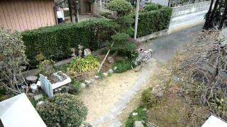 2011/3/11 Earthquake in Japan 地震 震度5強 埼玉県久喜市その1
