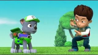 Paw patrol Full Episodes in English - Cartoon for kids