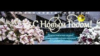Новогодний конкурс БИОТЕХНИКИ!