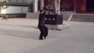 chen ziqiang lao jia yilu