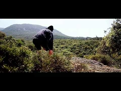 Dion - The Wanderer 2017 HD