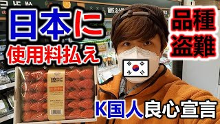 韓国パクリ。日本のイチゴ農家に使用料も払わずに?!韓国人ビックリ!改訂種苗法成立がもっと早かったら良かったのに!シャインマスカット・イチゴ・紅はるかサツマイモ。切りがなくて驚きました。