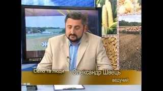 Харківські вчені створили новий пристрій, що готує якісний корм для свиней