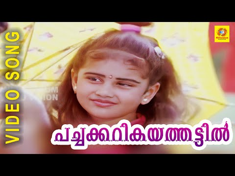 Evergreen Film Song|Pachakarikkaya Thattil Orumuthashi Pottatto | Kilukkampetti |Malayalam Film Song