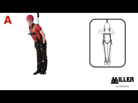 How to use Miller Relief Steps on an H-Design harness in