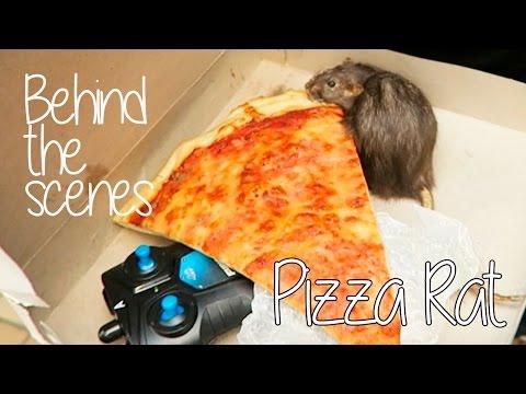 BEHIND THE SCENES Pizza Rat Prank