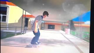 ea skate 4 tom penny