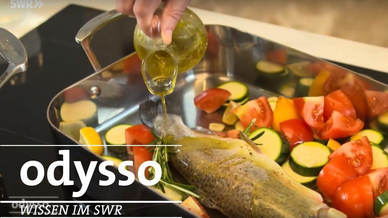 Ernährungskompass Von Bas Kast Odysso Youtube