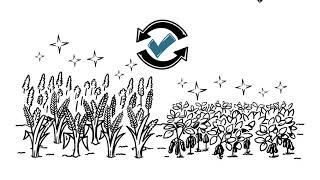 Manejo de resistência a fungicidas