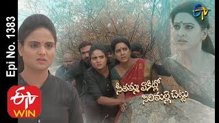 Seethamma Vakitlo Sirimalle Chettu | 5th February 2020 | Full Episode No 1383 | ETV Telugu