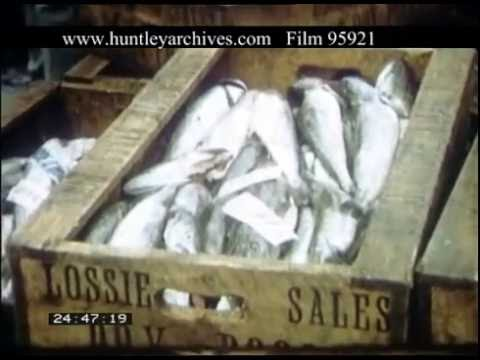 Selling Fish In Oban,  1950s - Film 95921