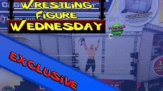 Wrestling Figure Wednesday EXCLUSIVE: Wicked Cool Toys - WWE Authentic Scale Modern Steel Cage