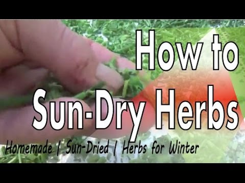 drying herbs how to keep dust free