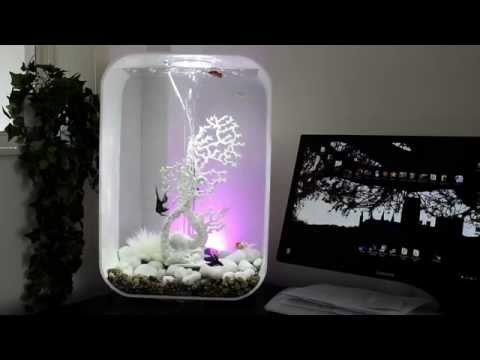 BiOrb Life 60 Fish Tank With Tropical/coldwater Fish