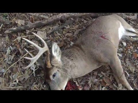 FT Riley Kansas, Deer Hunting Buck Kill