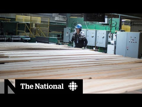 U.S. Tariffs' Impact On Canadian Lumber