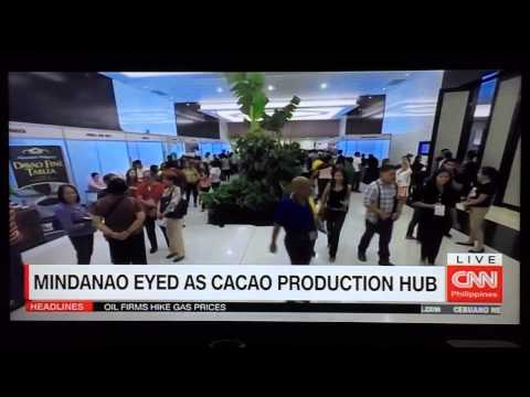 Mindanao eyed as cacao production hub