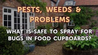 What Is Safe to Spray for Bugs in Food Cupboards?