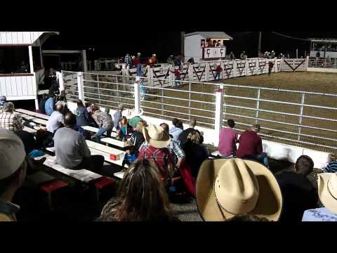 Cowtown Rodeo, Wild Bull Takes Out Three Cowboys!