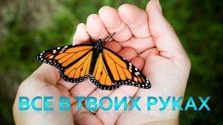 Притча Бабочка или Все в твоих руках