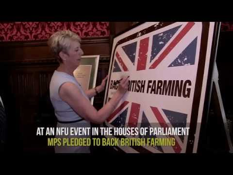 NFU urges MPs to back British farming at Brexit event