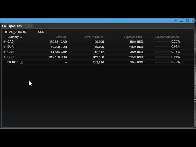 Using the FX Exposures Module in ELANA Global Trader