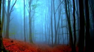 Stephen Peppos - Follow The Mist