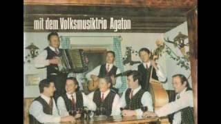agaton trio & lindwurmquartett - Verwelkte Bleamlan