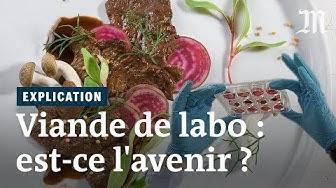 La viande de laboratoire peut-elle nourrir la planète ?